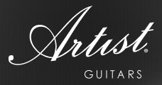 Artist Guitars NZ Coupon Codes